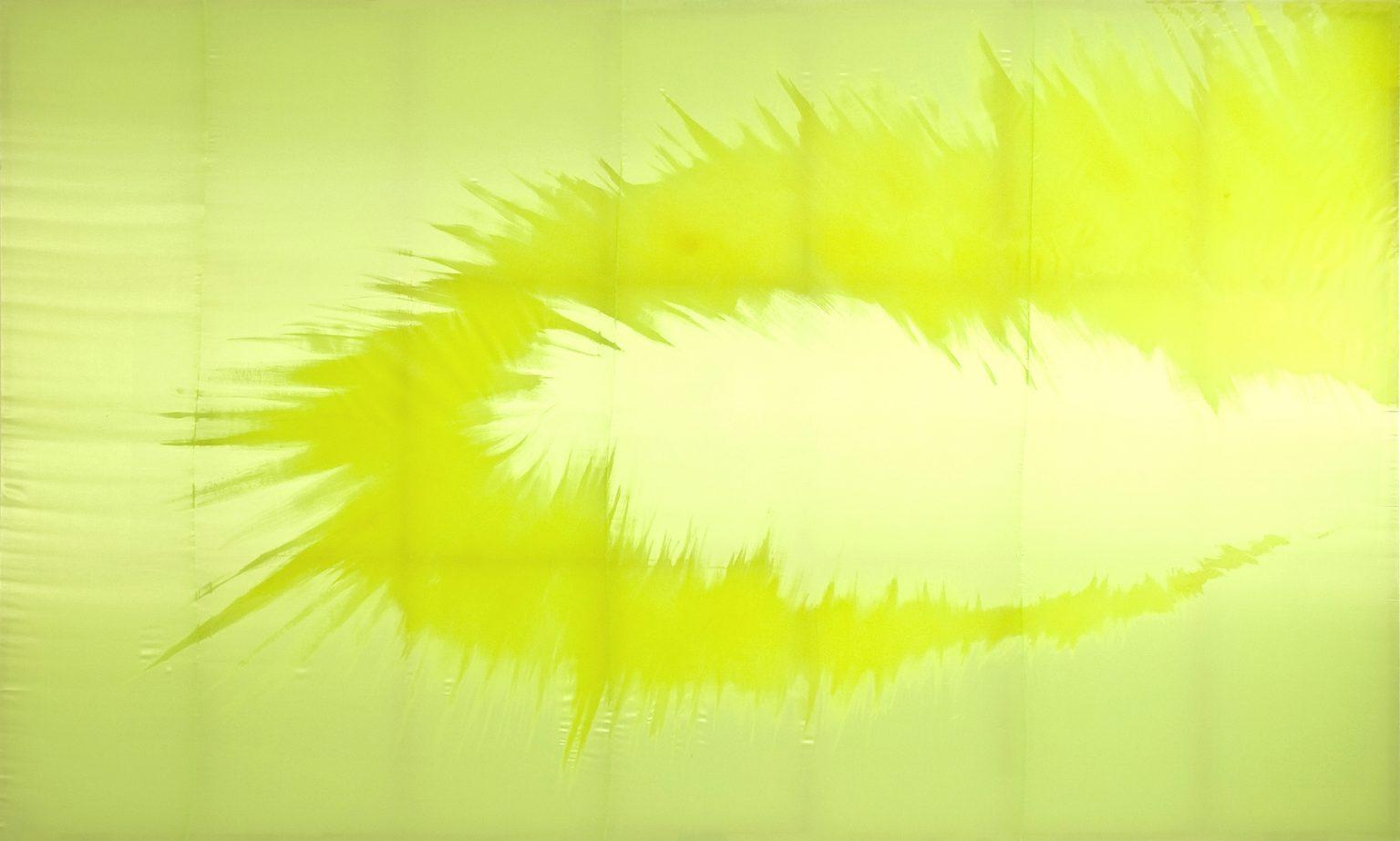 Daniel Lergon, ohne Titel, 2008, Lack auf Stoff, 300 x 500 cm