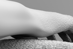 Juliane Tuebke-skin_2015_45x60cm_Inkjetdruck