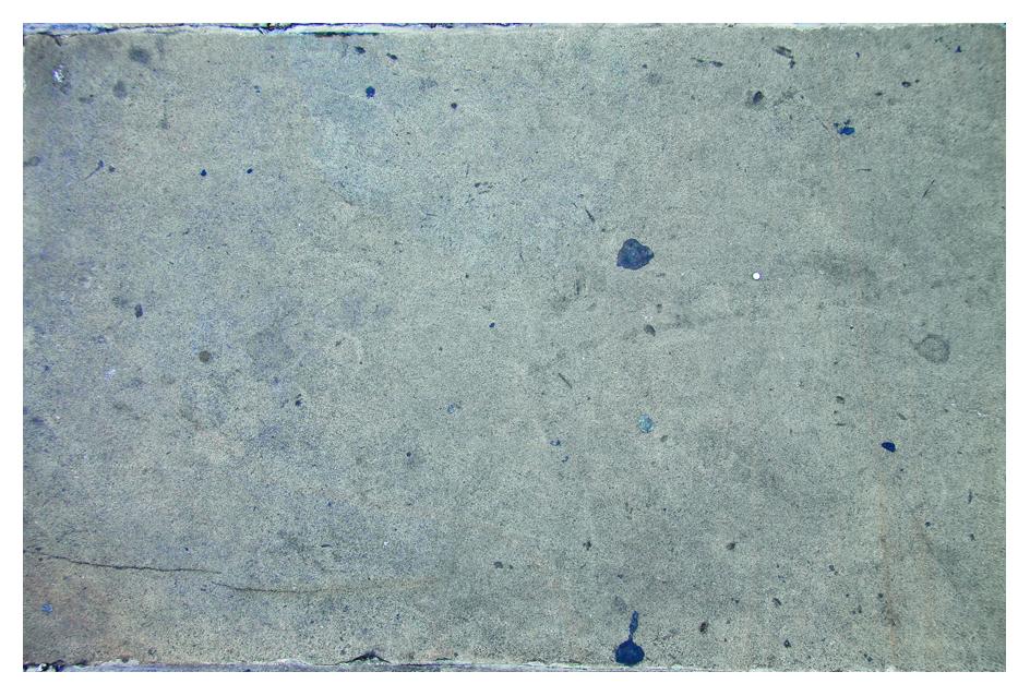 Bild: Texture Emporium